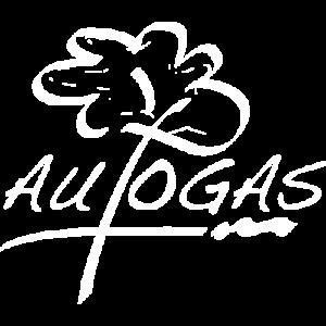 Wordpress website gemaakt voor Autogas België