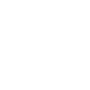 Wordpress website gemaakt voor Stichting Koude Kilometers