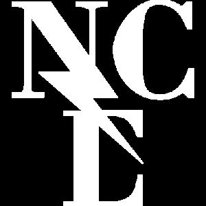Wordpress website gemaakt voor New Cool Electric