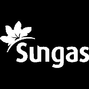Tijdelijke WordPress website gemaakt voor Sungas België